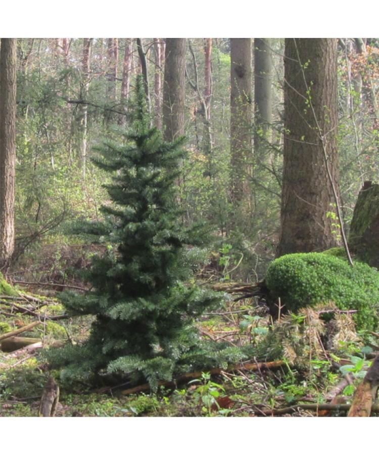 Basic Tree Warm Bordeaux 120cm-49