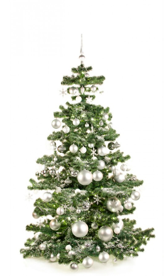 Basic Tree Bright and Silver 210cm-1421