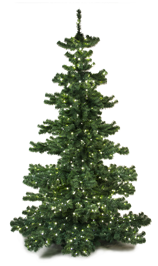 Basic Tree Plain 240cm-0
